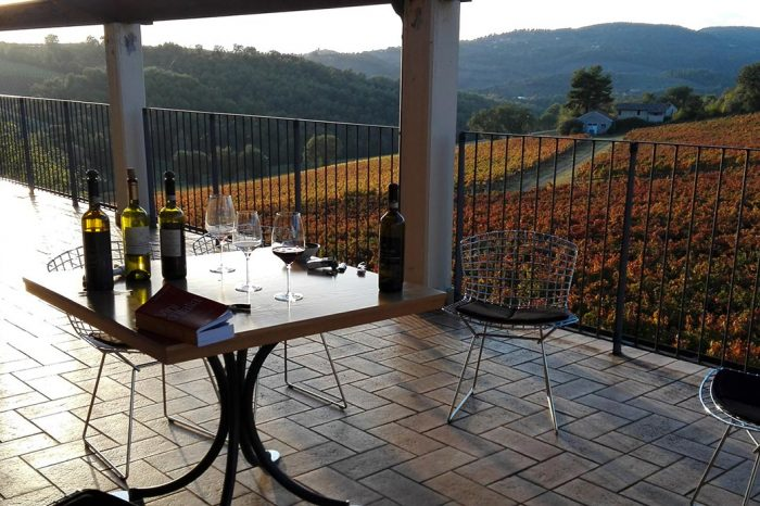 Cantina di Villa Mongalli - Immagine11