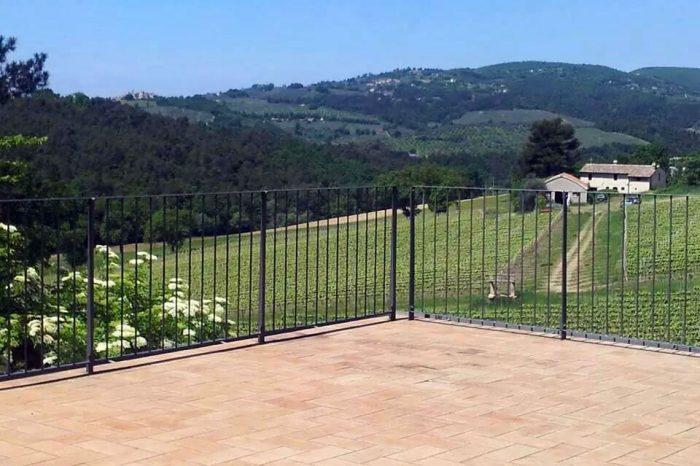 Villa-Mongalli_vigna-veduta