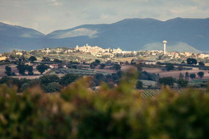 Vista_Montefalco