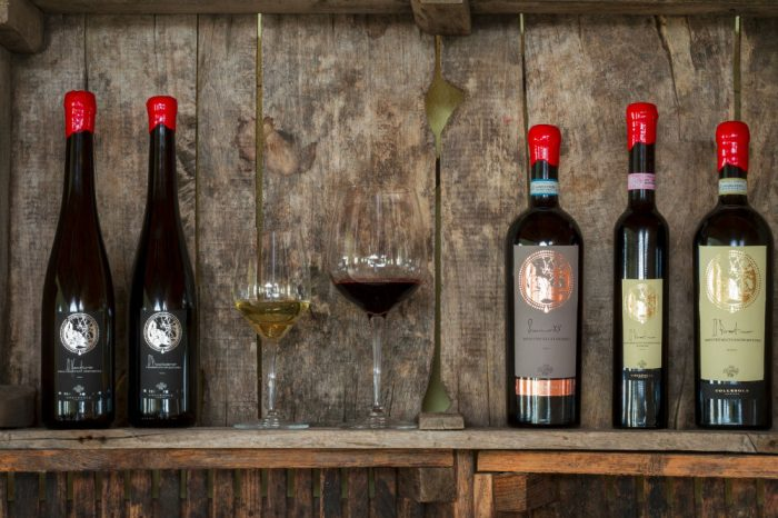 Cantina-Collesole-Esposizione-vino