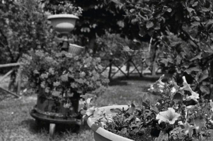 La-Veneranda-giardino